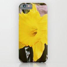 Springtime is here. iPhone 6s Slim Case