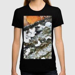 Autumn Lichen and Moss T-shirt