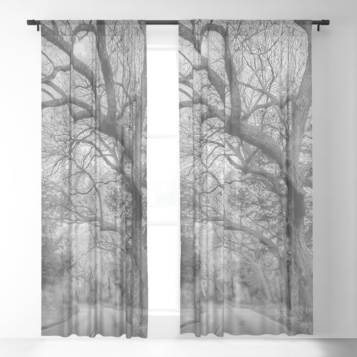 Hairy Man Road - Brushy Creek- Round Rock, Texas - Black and White Sheer Curtain