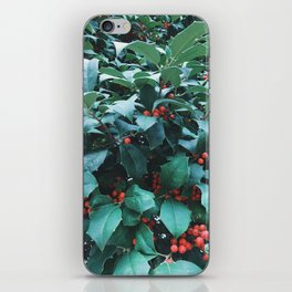 Sprigs of Holly iPhone Skin
