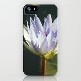 Longwood Gardens - Spring Series 20 iPhone Case