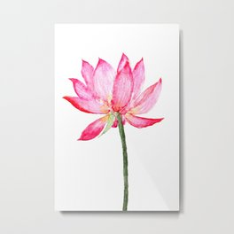 pink lotus flower Metal Print