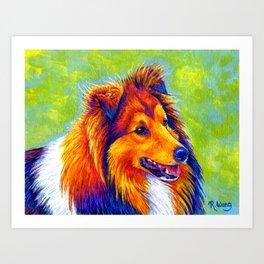Colorful Shetland Sheepdog Art Print