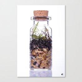 Moss Forest Micro Terrarium Canvas Print