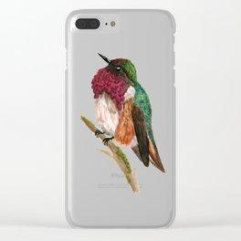 Wine-throated Hummingbird Clear iPhone Case