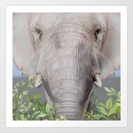 Foraging Elephant Art Print
