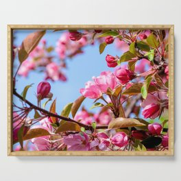 Paradize apple in bloom Serving Tray
