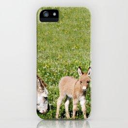 Donkey Baby  iPhone Case