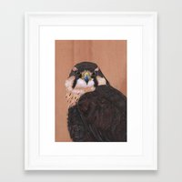 falcon Framed Art Prints featuring Falcon by LouiseanneDem