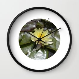 yellow water lily VII Wall Clock