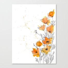 California Poppy Splash Canvas Print