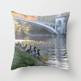 Berlin Insel Throw Pillow