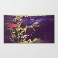 weed Canvas Prints featuring Weed by ©valourine