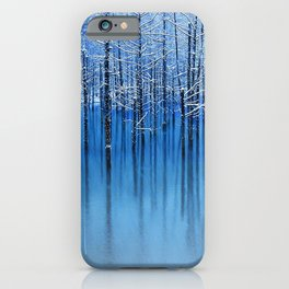 Winter Trees Glazed in Ice Reflecting in Pond iPhone Case