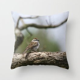 Sparrow in Tree Throw Pillow