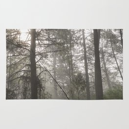 Calm morning... Into the foggy woods Rug