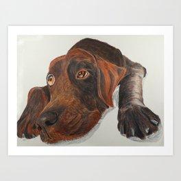 Cute dog in Pencil Colrs Art Print