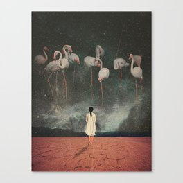 Hanging on to a Dream Canvas Print