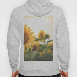 After the Rain - Sunflower Field II Hoody