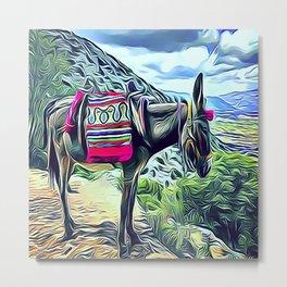 Mexican Burro Metal Print