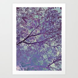 forest 2 #forest #tree Art Print