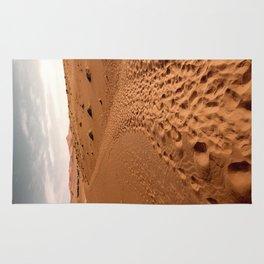 DESERT MIGRATION Rug