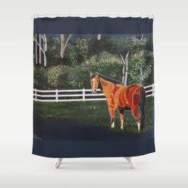 In a Field Shower Curtain