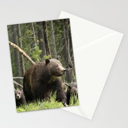 A Walk Through the Forest - Grizzly 399 and Her Four Cubs Stationery Cards