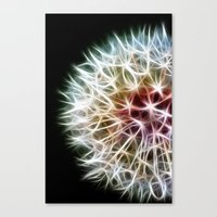 dandelion Canvas Prints featuring Fractal dandelion by Mark Nelson