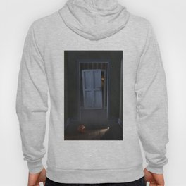 Monster in the closet Hoody