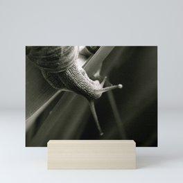 Snail Love  (London & Travel) Mini Art Print