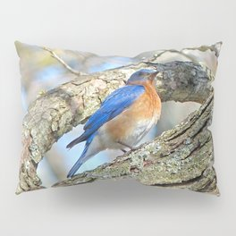 Bluebird in Tree Pillow Sham
