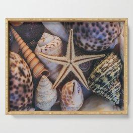 Seashells Serving Tray