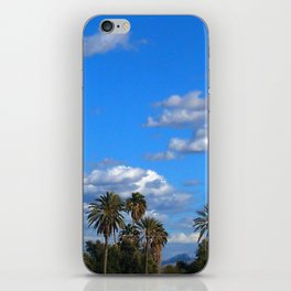 Zona Palm Trees iPhone Skin