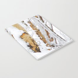Snow Covered Birch Trees Notebook