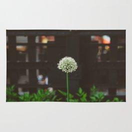 New York Garden Rug