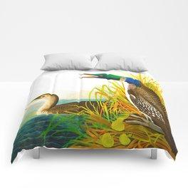 Great Norther Diver or Loon John James Audubon Scientific Birds Of America Illustration Comforters