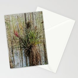 Unexpected Beauty Stationery Cards