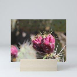 Red Flower Cactus Mini Art Print