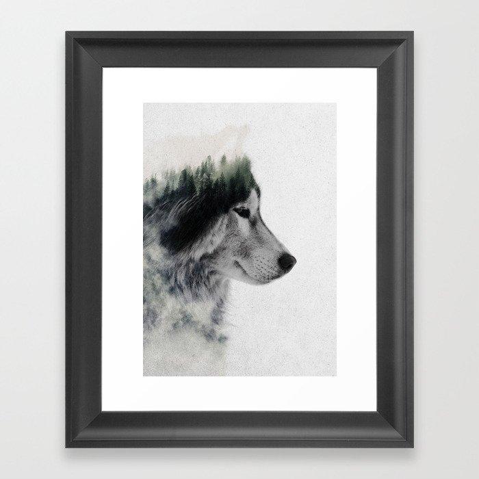 Wolf Stare Gerahmter Kunstdruck