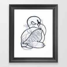 Carrick Swan Framed Art Print
