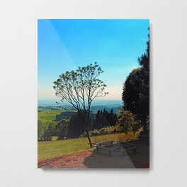 A tree, some benches and lots of scenery Metal Print