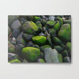 Mossy Rocks DPG151015a Metal Print