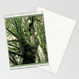 RAINFOREST MAPLES IN BRIGHT GOLDEN LIGHT Stationery Cards