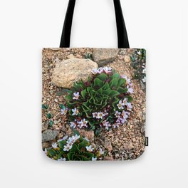 Alpine Spring beauty Colorado Tote Bag
