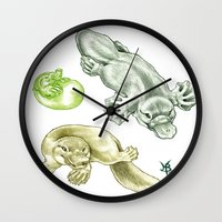 platypus Wall Clocks featuring Platypus by Mayra Boyle