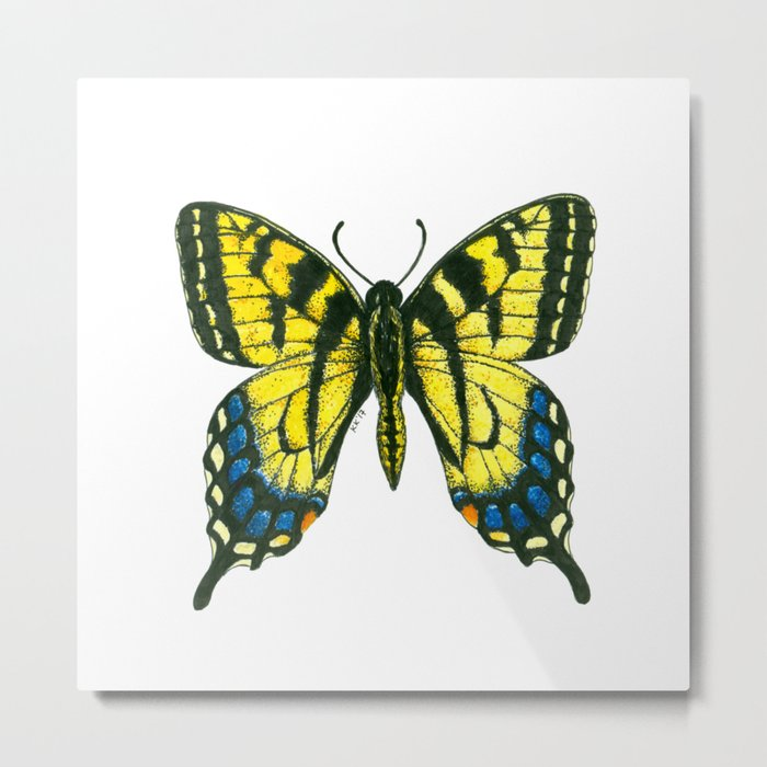 Tiger swallowtail butterfly watercolor and ink art, watercolor butterfly, eastern tiger swallowtail Metal Print