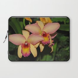 Cattleya (The Corsage Orchid) Laptop Sleeve