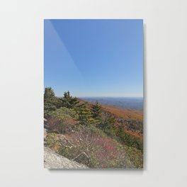 Autumn Alpine Landscape, Vertical Metal Print