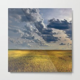 Yellow Wheat Metal Print